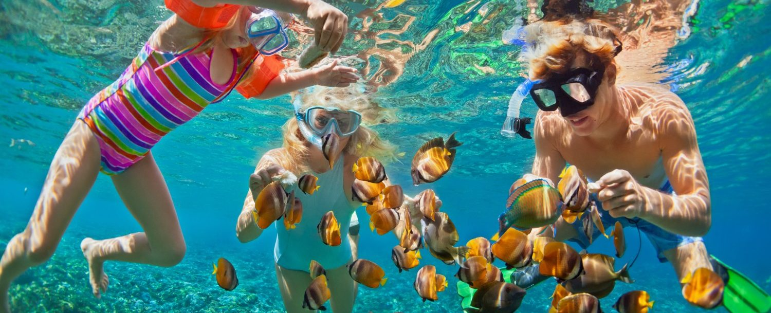 Here Are the Top 3 Places to Try Snorkeling in Fort Lauderdale